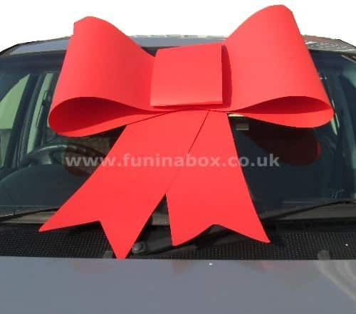 Big Red Shoelace Style Bow in Card