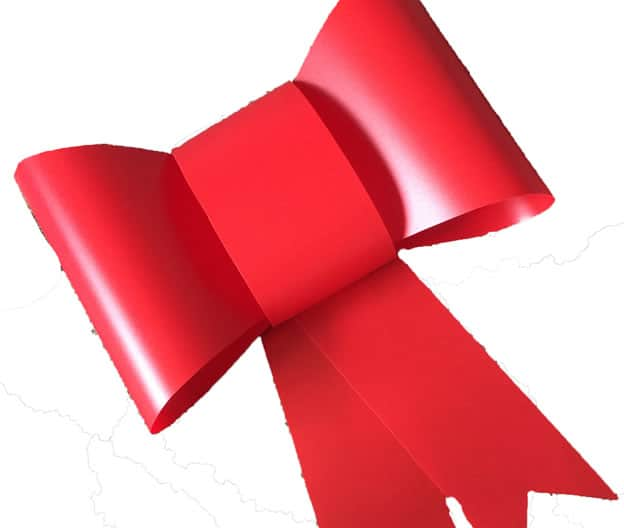 Red Plastic Car Bow