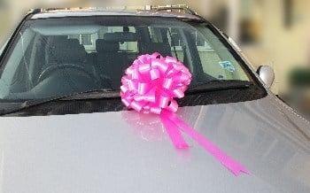 Bright Pink Pom Pom Bow