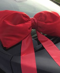 Red-Shoelace-Bow-50cm