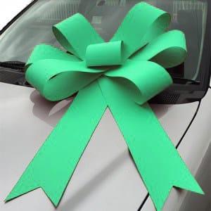 Green bonnet bow