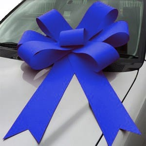 royal blue bonnet bow