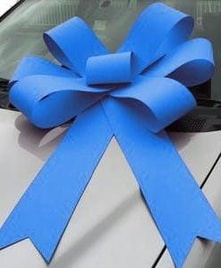 turquoise blue bonnet bow