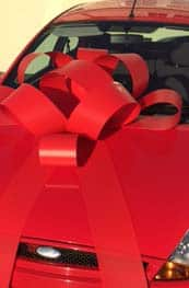 Red Plastic Bow