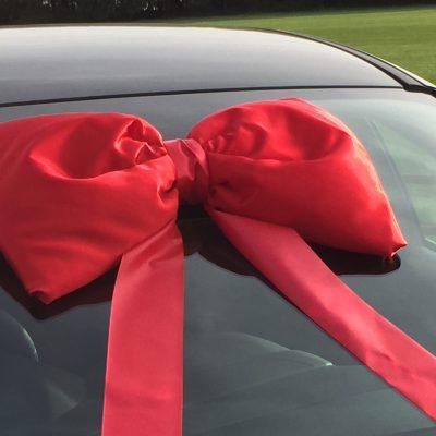 Big Red Car Bows