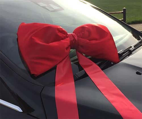 Red Shoelace Bow 50cm
