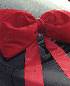 Big Red Car Bows