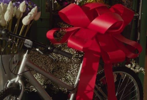 Red Rosette Bow on new bike